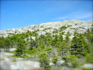 MtMonadnock2-AmpitheaterTrail1-summit-4-21-02-JB