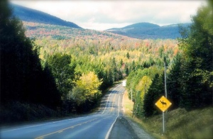 old-canada-road